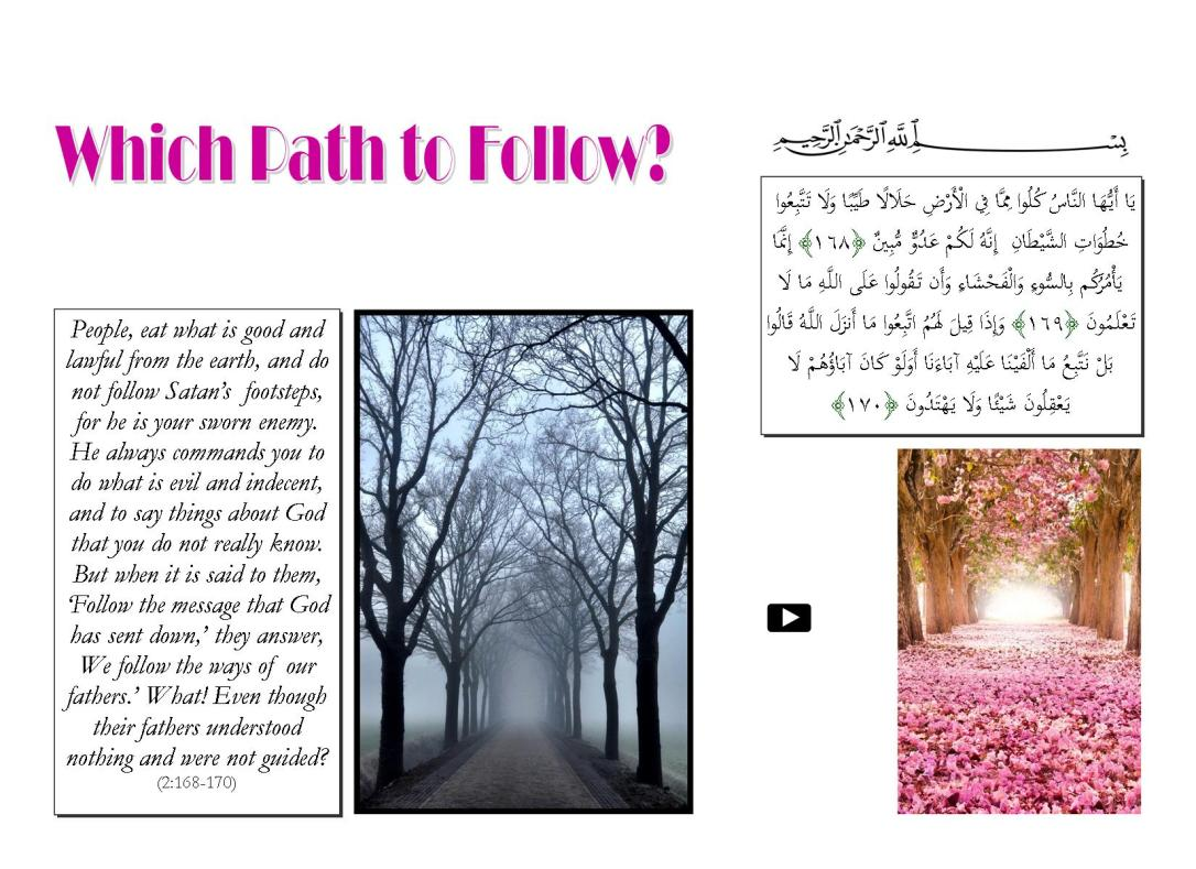 Which Path to Follow.pub
