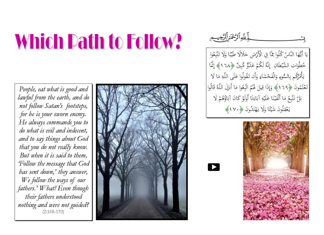 Which Path to Follow.pub