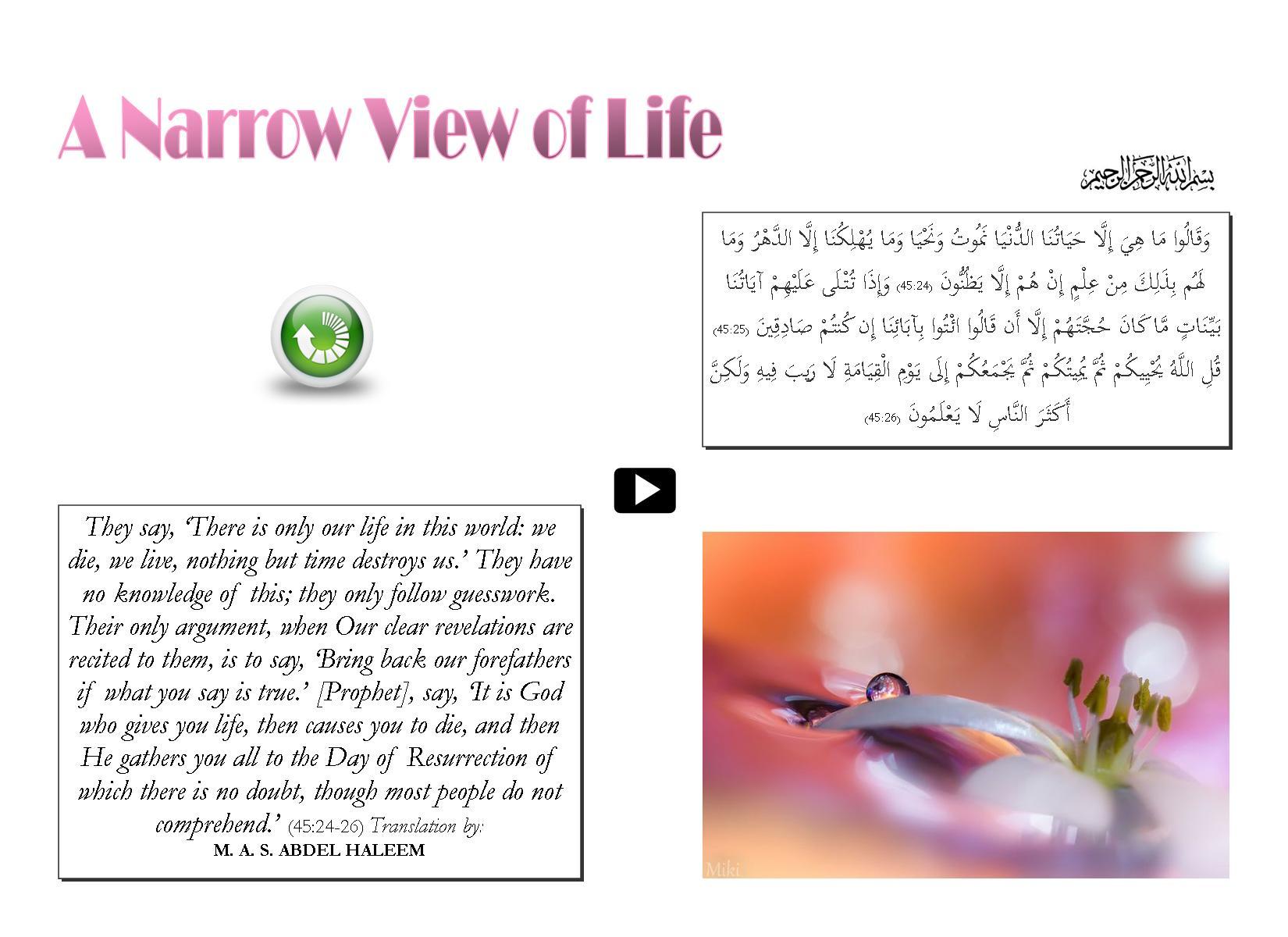 A Narrow View og Life