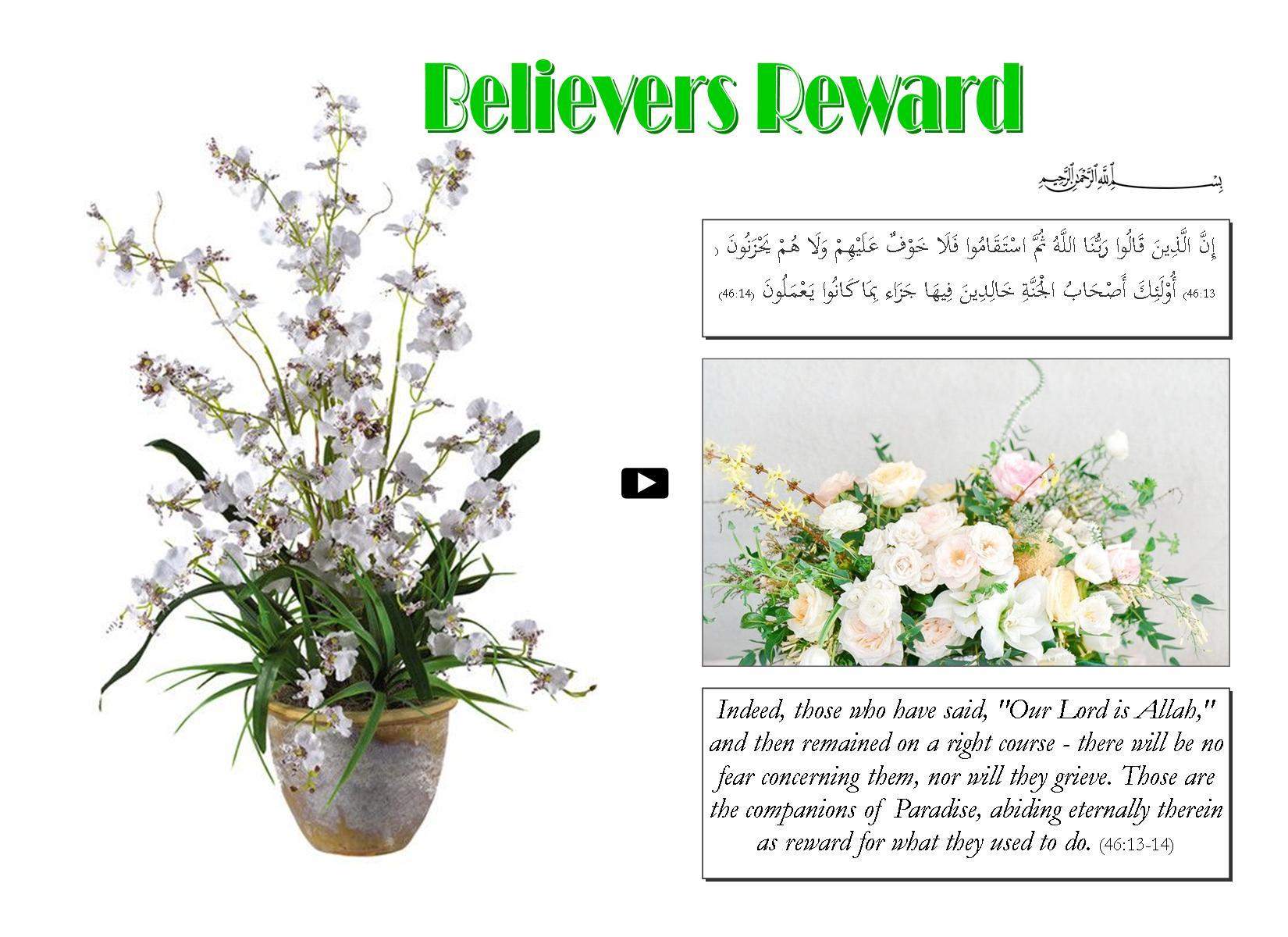 Believers Reward